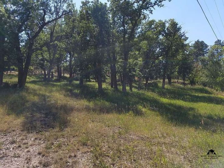 1301 Custer Street  -  With nearly ½ acre you can have all the privacy you desire. You can build or place your modular or mobile home on a permanent foundation. Take a look today! $35,500. *  MLS #52256. Call Ryan - 605.484.7803