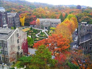 Study abroad in South Korea at the Yonsei University! All classes are taught in English.