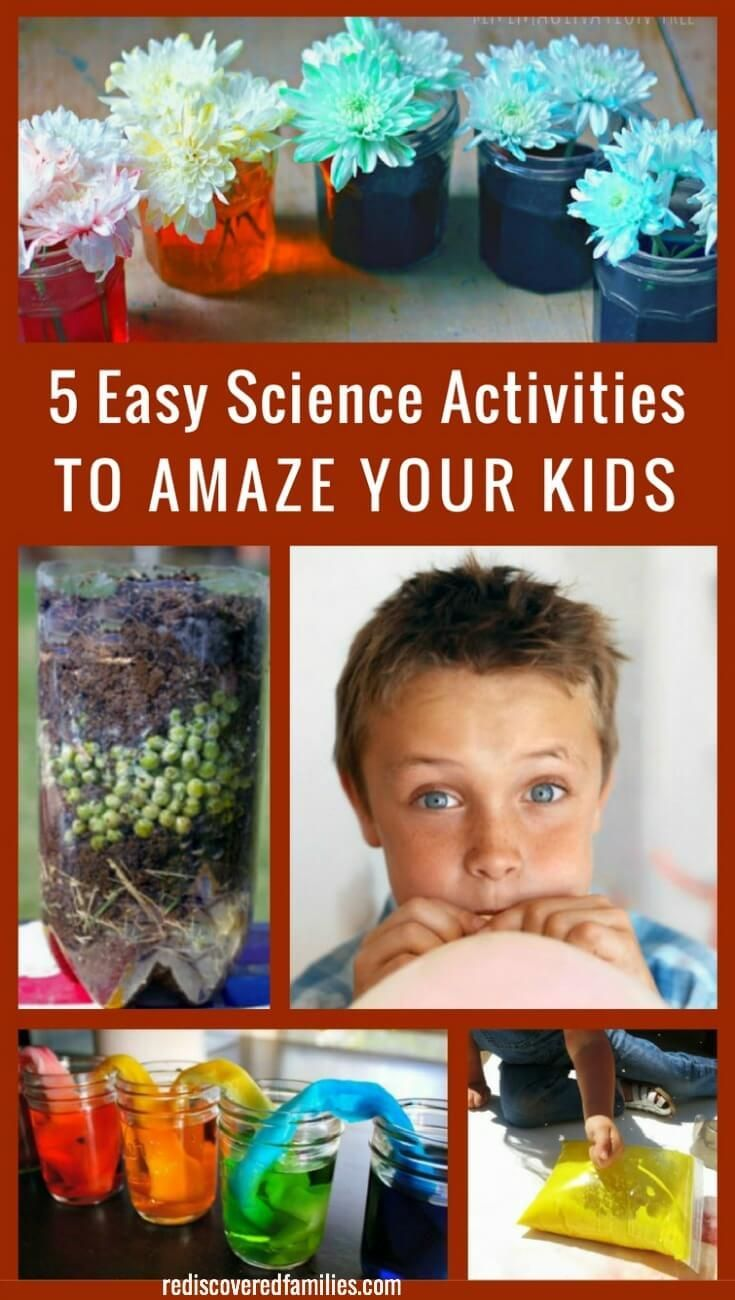 1000 images about simple science experiments and activities for kids on pinterest. Black Bedroom Furniture Sets. Home Design Ideas