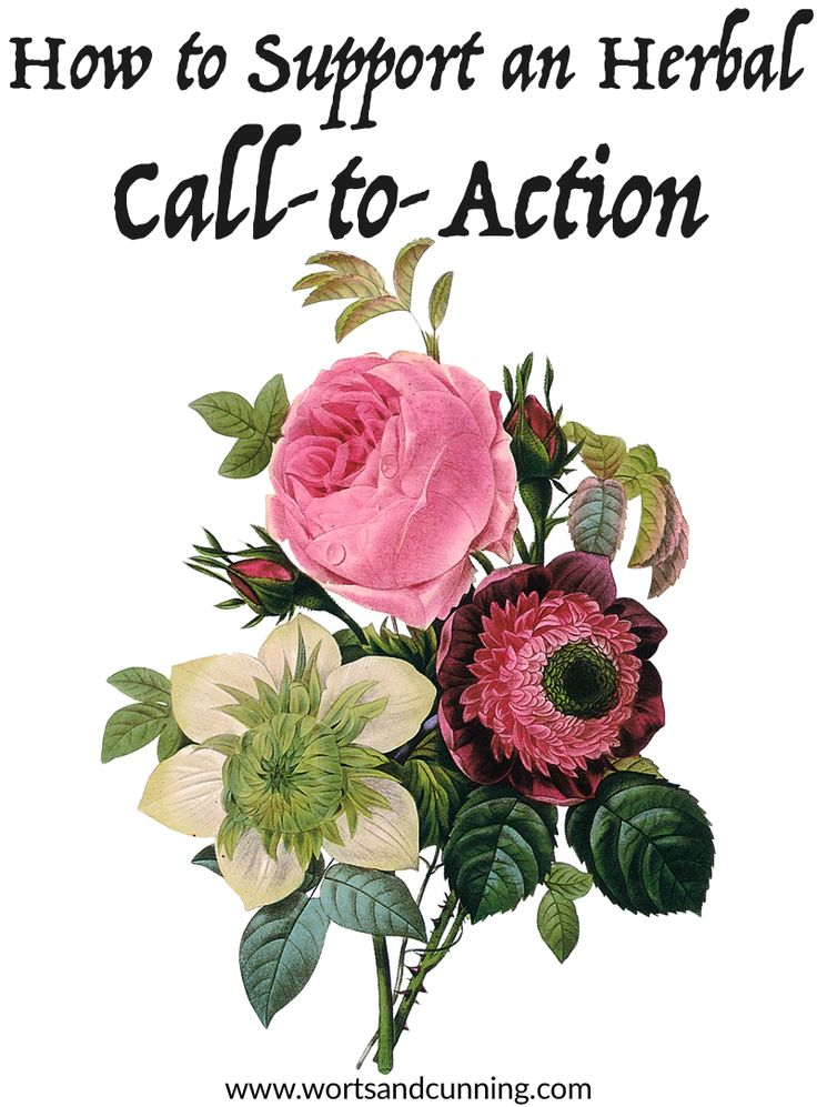 How to Support an Herbal Call-to-Action  http://www.wortsandcunning.com/blog/how-to-support-an-herbal-call-to-action