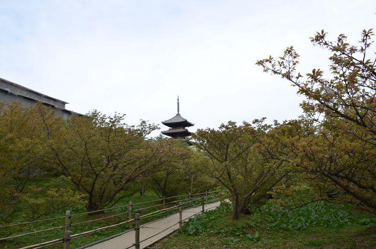 https://flic.kr/p/rG8At8   DSC_2452   Ninna-ji temple
