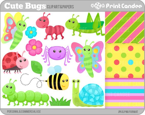 17 Best images about Bugs on Pinterest | Clip art, Caterpillar and ...