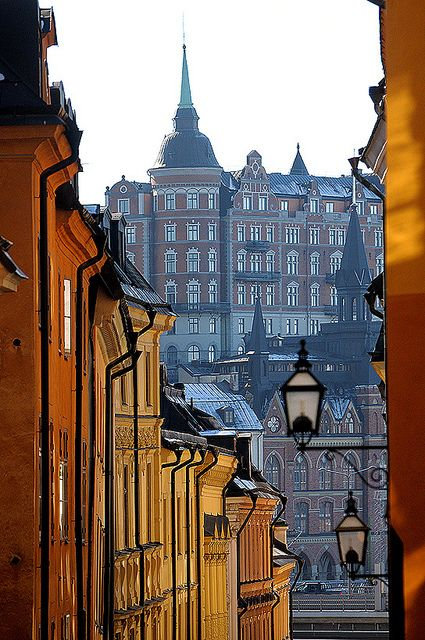 "Gamla Stan, Stockholm's oldest section. — ""Erika set her coffee cup on the table and stood by the window looking out at the view of Gamla Stan. It was 9:00 in the morning. All the snow had been washed away by the rain over New Year's."" (The Girl with the Dragon Tattoo)"