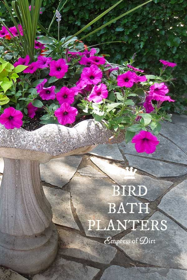 12+ Ideas for bird bath planters - turn that broken bird bath into something wonderful! Concrete bird baths tend to crack from weather extremes but you can turn them into wonderful planters for flowers and succulents.