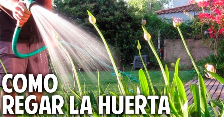 29 best images about cosas del jardin on pinterest - Cosas para el jardin ...