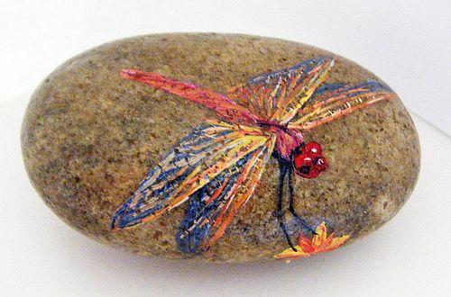 Flickr dragonfly