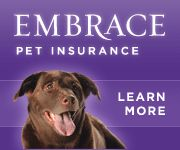 FREE Embrace Pet Insurance Quote