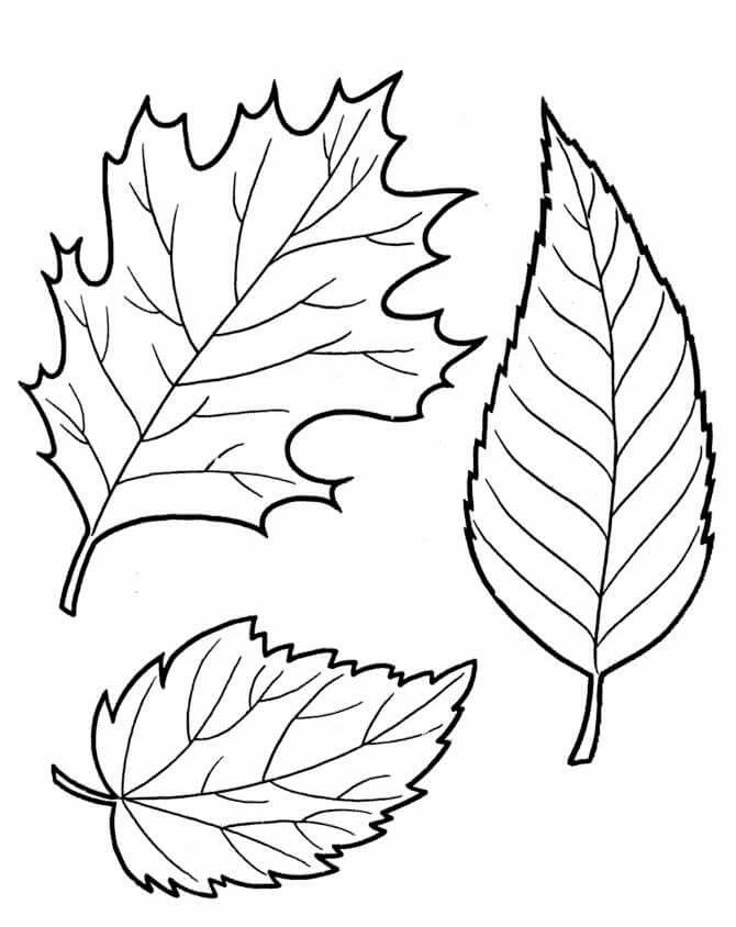 78 besten ősz Bilder auf Pinterest   Herbst blätter, Bastelei und ...
