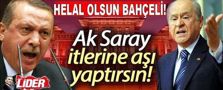 @fadobosna @gulay_tuncel @ae_ege @akfaot @Erkan62Fatma @fetih_sancak @Ozlem2933  #KaçakSarayınSoytarısıAydınÜnal