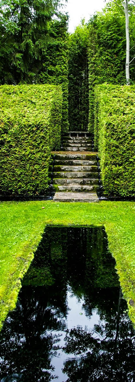 1000 Images About Landscape On Pinterest Gardens Hedges And