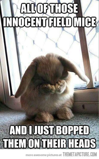 Little Bunny Foo Foo… hahahahaha