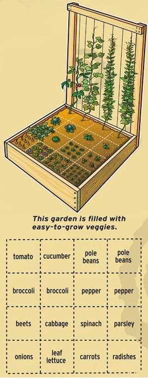Pallet Garden Plan