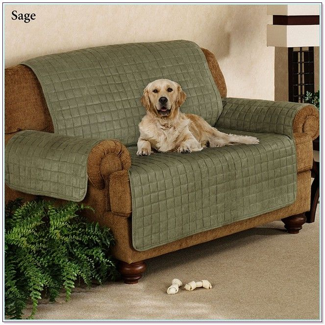 Beautiful Leather Sectional Pet Covers