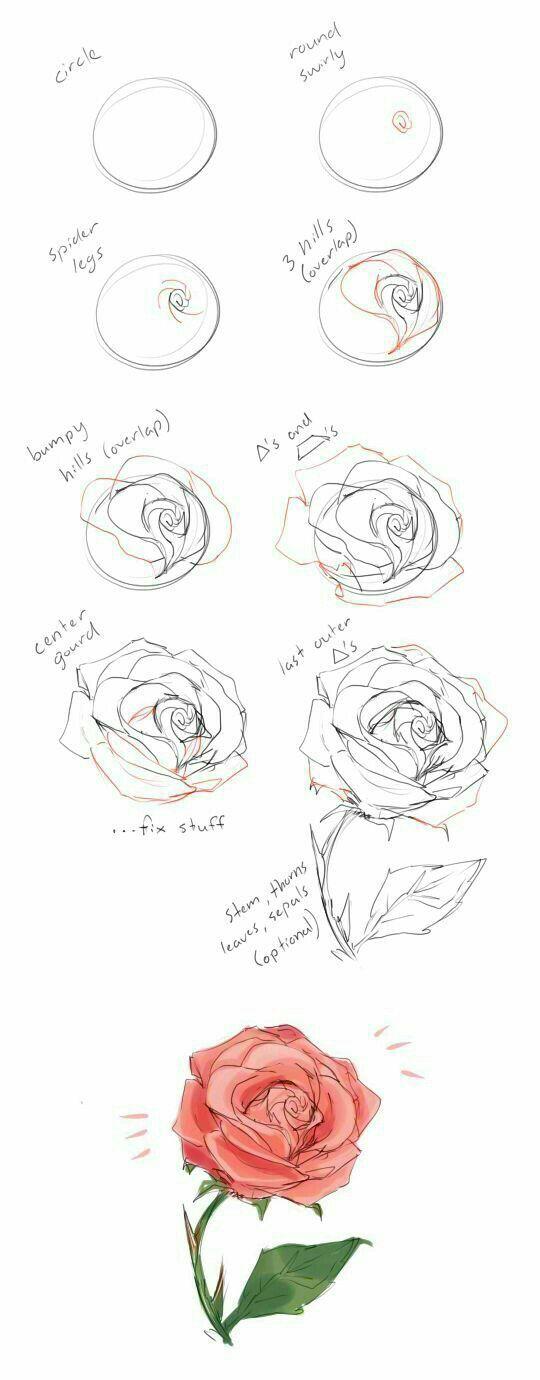 Anleitung zum Zeichnen einer Rose – #Anleitung #ei…