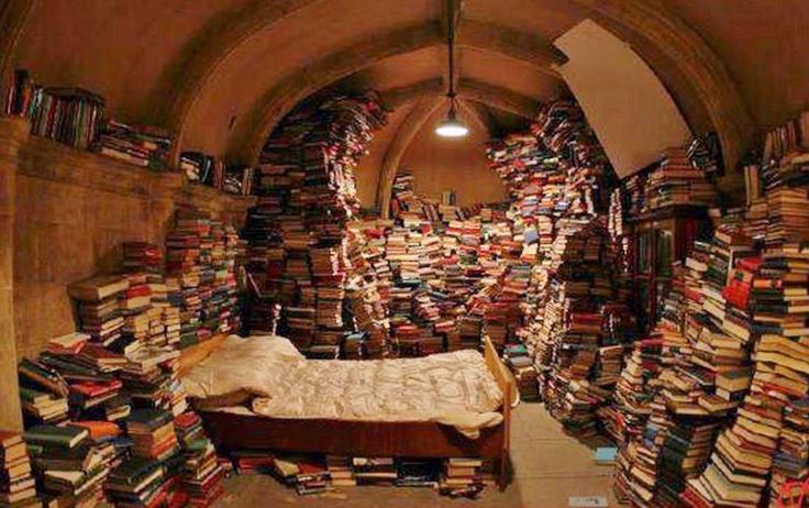 BOOK HOARDER. Bedroom/Library Vault House © Aravind ...