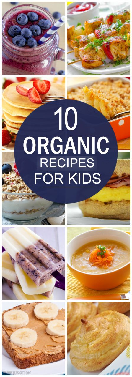 Organic Recipes For Your Kids: If you want to ensure your kid is eating healthy…