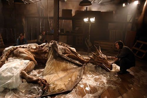 Real Dragons   Real Dragon Fossils on Display in China : Unexplained phenomena or ...
