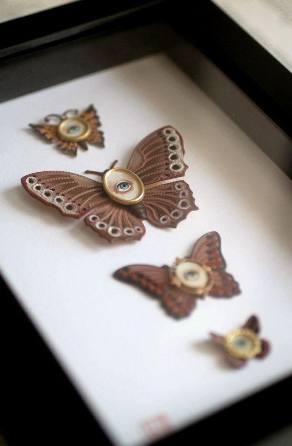 Cabinet of Curiosities Specimen no. 11 The Brown Moth Eye