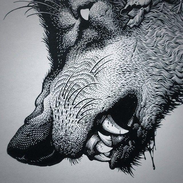 Гравюры картинки с волком, класса открытки