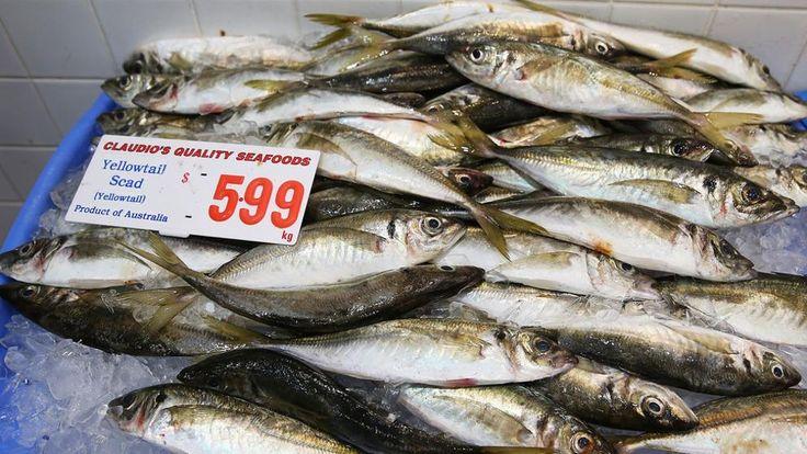 España se queda mañana sin pescado