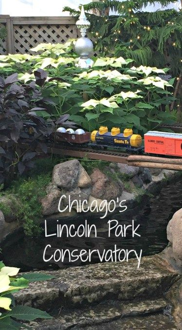 Embracing Nature at the Lincoln Park Conservatory- Becoming a Traveling Family