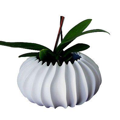 Neptune Porcelain Small Vase