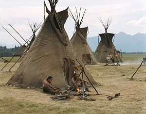 The Plains Apache and many of the Lipan Apache tribes adopted the buffalo hide tipi style house. Tipis were easier to keep warm than wickiups and usually had more room inside than a wickiup.