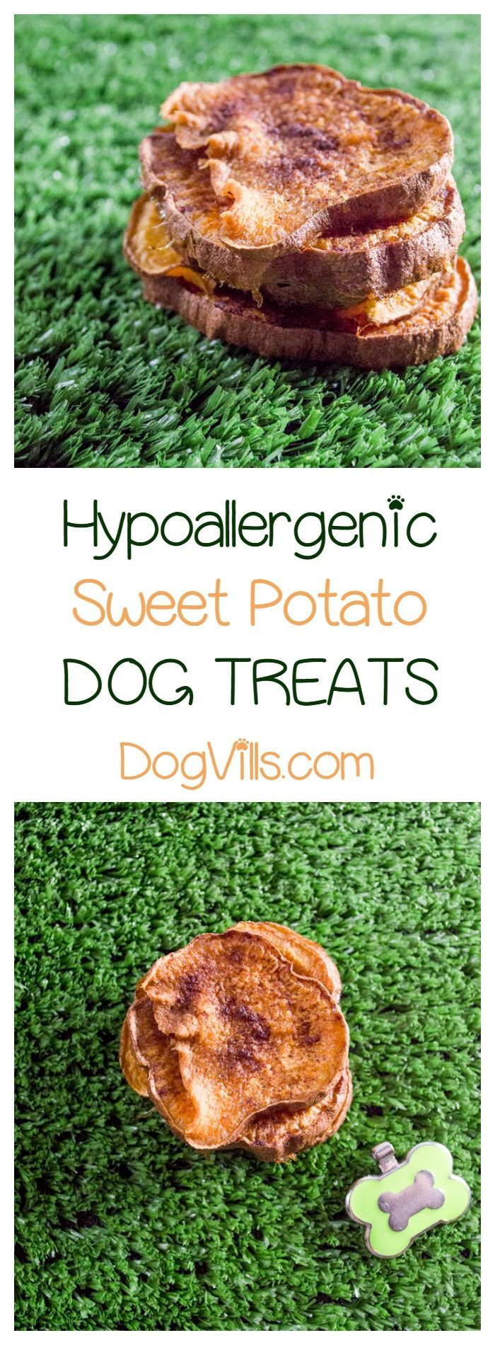 "When it comes to making a hypoallergenic dog treat, less is definitely more. The fewer ingredients you put into your homemade treats, the less likely you are to aggravate your pup's allergies. This easy sweet potato ""jerky"" chew dog treats recipe has only three ingredients. Check it out!"