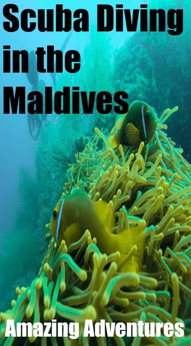 how to travel to maldives from us