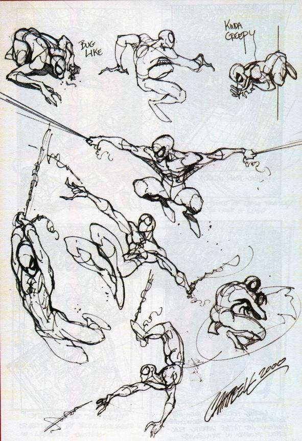 Spider-man Sketches//J. Scott Campbell/C/ Comic Art Community GALLERY OF COMIC ART