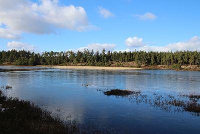 7 års søerne Frederikshåb plantage