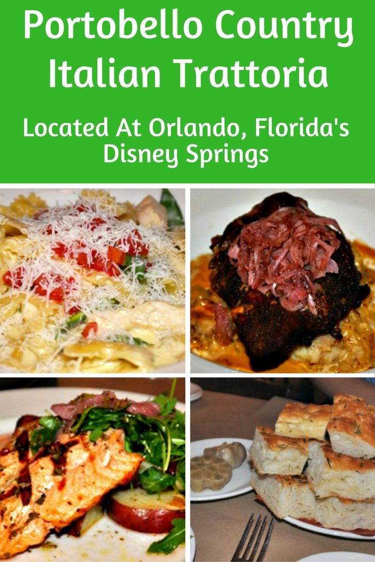 1404 best South Florida Fun images on Pinterest | South florida ...