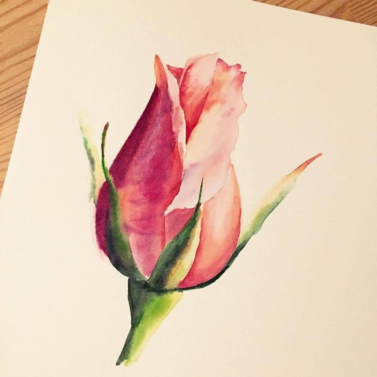 Watercolorist: @lulebedeva  #watercolor #waterblog