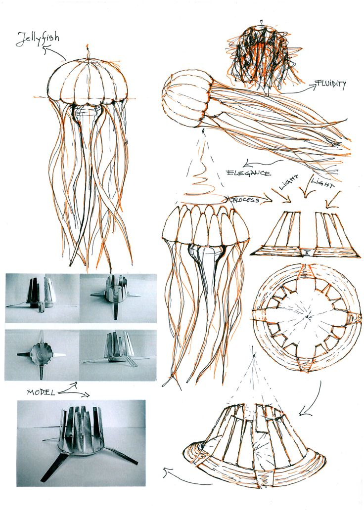 Jellyfish concept.© 2012 by Alexandru Mihai Ticalo. All rights reserved