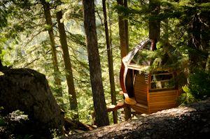 The HemLoft, Whistler, BC, built by Joel Allen~  A  secret tree house, hiding in the woods of Whistler.