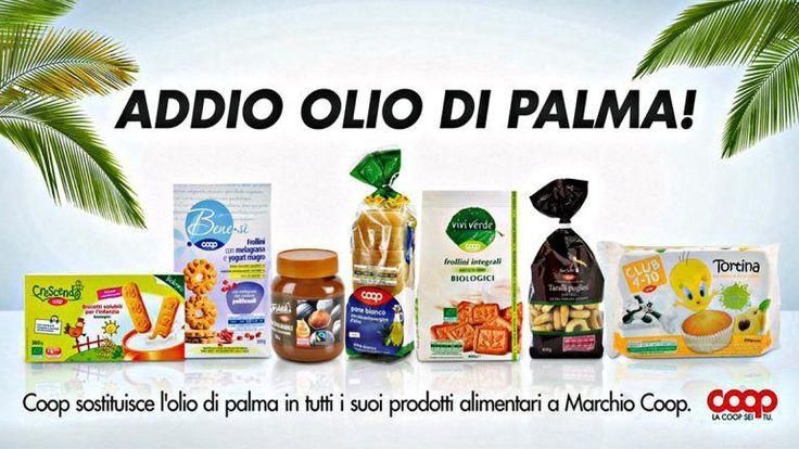 La Coop toglie lolio di palma da tutti i prodotti a marchio e diventa la prima catena d A distanza di 6 mesi da quando Coop ha annunciato di avere bloccato oltre 120 prodotti con il propri olio di palma coop