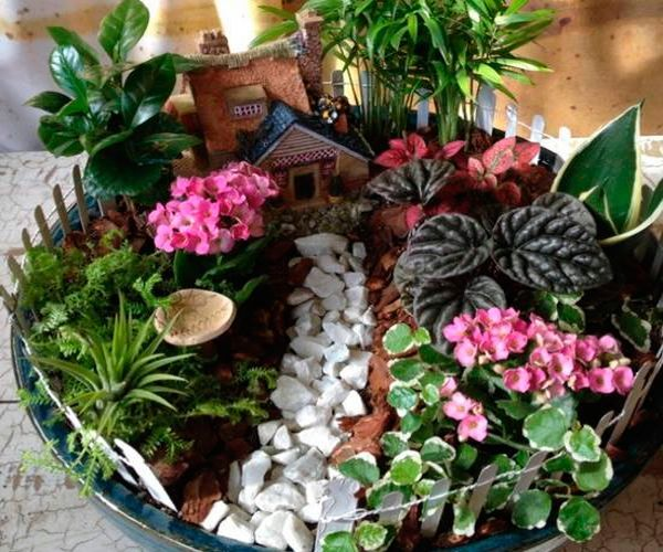 Мини -сады своими руками
