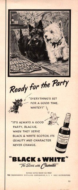 1951 Scottie and Westie dogs in Black and White Scotch by Vividiom, $9.00