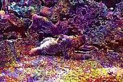 "New artwork for sale! - "" Sloth Baby Animal Mammal Wildlife  by PixBreak Art "" - http://ift.tt/2vu6Ww8"