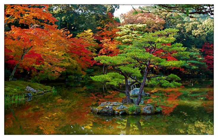 69 best images about japanese gardens on pinterest for Traditional japanese garden