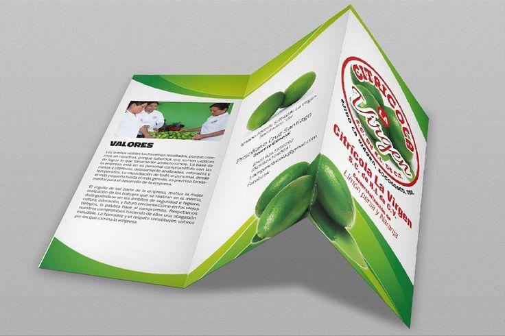 Nosotros manejamos  #tripticos  #dípticos #polipticos  Una buena #imagen dice más que mil #palabras. Nosotros #diseñamos e #imprimimos tus #ideas.  Visita www.oscaromargp.com y cotiza tu #diseño #gráfico contamos con #tarjetas de #presentación #postales #volantes #polidipticos #lonas y muchos diseños más. Todo al alcance de tu #economía. Da a tu #empresa #negocio #producto o #servicio la imagen que se merece. No olvides visitar http://ift.tt/2p6caew.