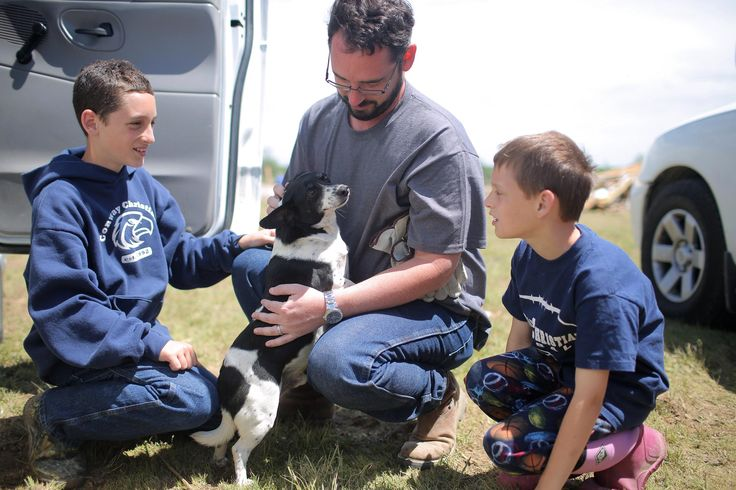 """Dog Believed Lost in Deadly Arkansas Tornado Returns Home"" article"