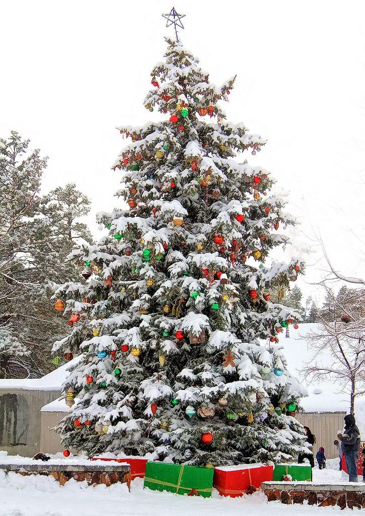 The Big Christmas Tree in Big Bear Village at Big Bear Lake, CA.  A beautiful sight!