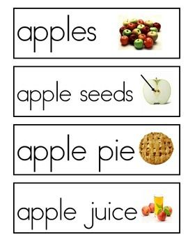 This is a set of 8 apple vocabulary cards for your monthly word wall!The print is large and the photos are colorful and clear! Included are the words:applesapple seedsapple coreapple treeapple blossomapplesauceapple pieapple juice