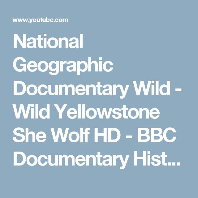 National Geographic Documentary Wild - Wild Yellowstone She Wolf HD - BBC Documentary History - YouTube