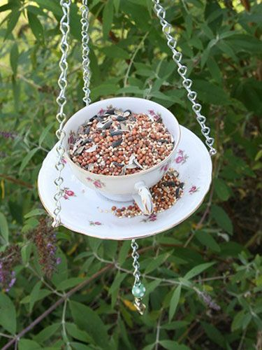 Best 25 teacup bird feeders ideas on pinterest bird for Bird seed glue recipe
