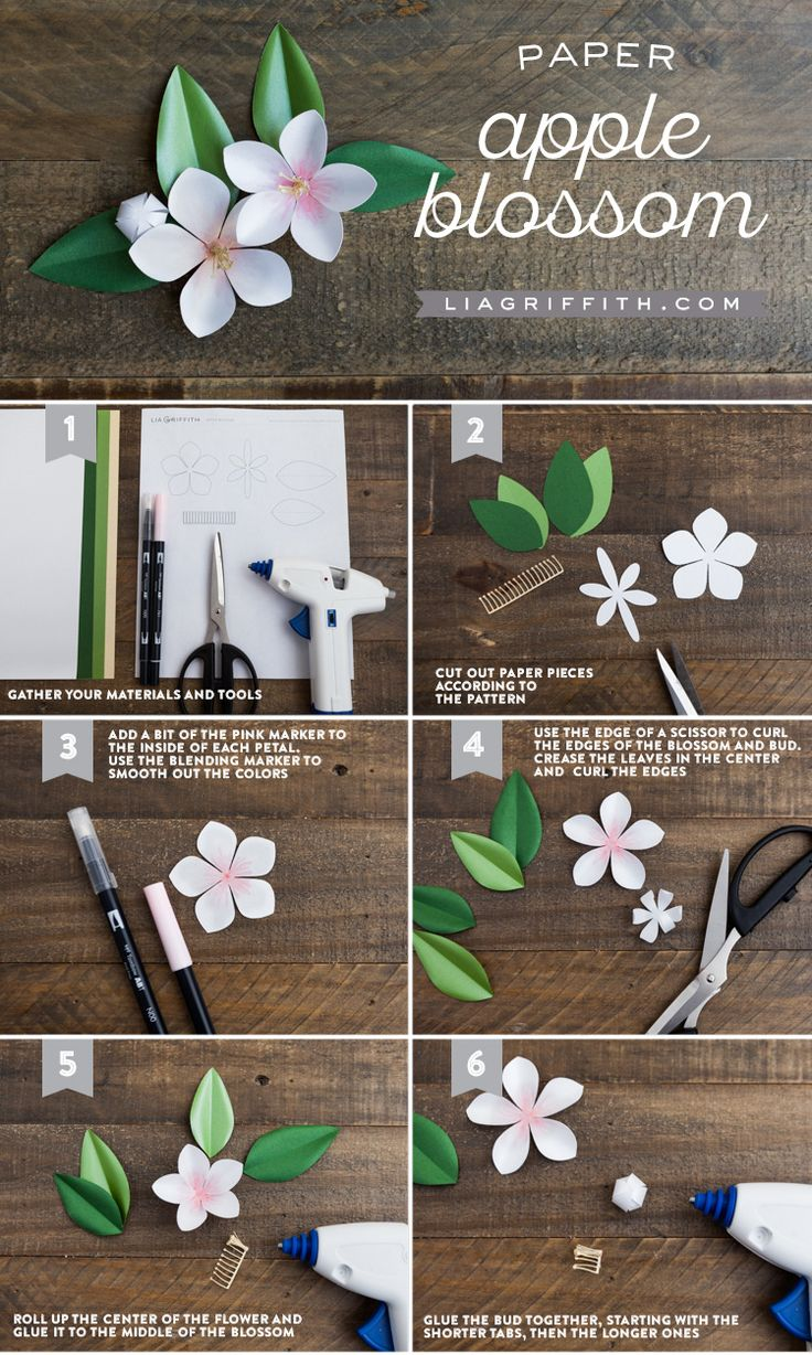 If you are looking for a DIY craft project for spring, try these paper apple blossom branches to add to your home decor! Design by handcrafter Lia Griffith