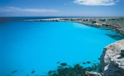 Beths for Yachts and Superyachts in Favignana Island - Egadi Islands, Western Sicily