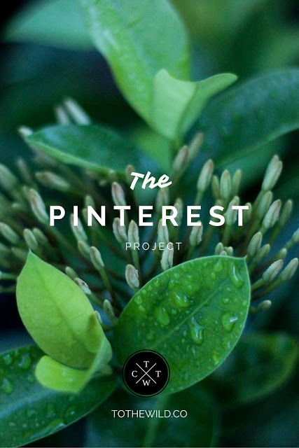 The Pinterest Project