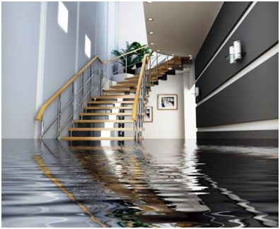 7 Tips for Cleaning Your Home After Water Damage | Home Improvement
